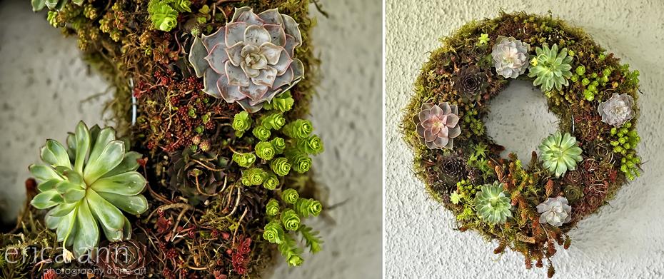Geranium Lake Flowers Living Wreath