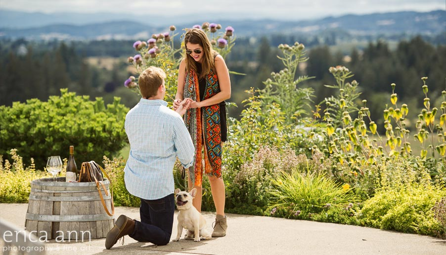 Anne Amie Vineyard Proposal